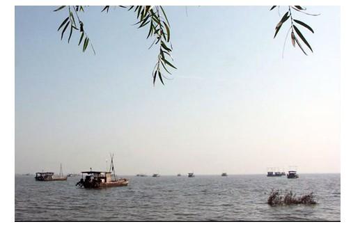 泗陽洪澤湖旅游度假風景區