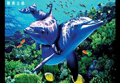壁纸 海底 海底世界 海洋馆 水族馆 394_274
