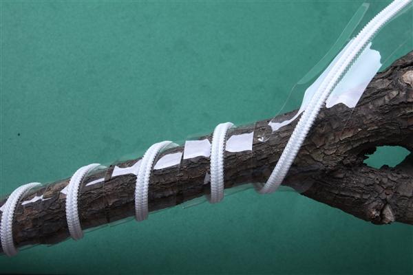 幼儿园手工制作大树带拉链